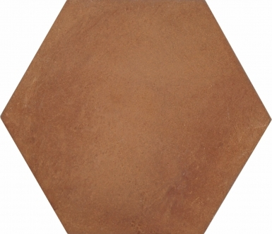Hexagon - Tierra High Fired Floor Tile